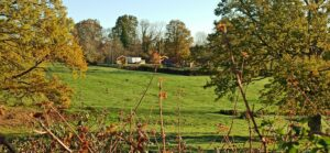 Camping-des-Papillons-Lalizolle-Nature